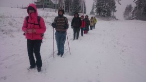 Estiška žiema