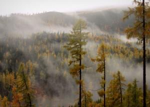 Mistika dvelkiantis slovakiškas rytas