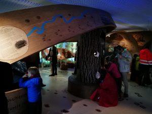 Įspūdingoji Krekenavos lankytojų centro ekspozicija