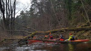 Užvartos upę įvelka į paslaptingumo šydą