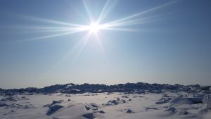Lietuviškoji arktinė dykuma