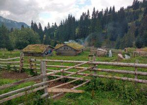 Bujtina Lojza – dar vienas vasaros kaimas