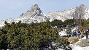 Vienam kalnuose užtenka lengvo pasivaikščiojimo, kitam – sudėtingesnio kopimo