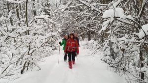 Stengdamiesi nesugriauti žiemos pasakos žygiuojame per Sirvėtos regioninio parko miškus