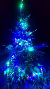Su Naujaisiais metais, Keliautojai! Te Jūsų širdys būna pilnos romantiškos šviesos!