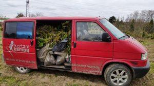 KK mikroautobusiukas net linksta nuo augalų kiekio