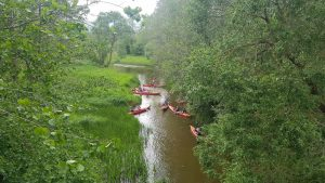 Integracija upėje