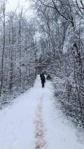 Žiemos pasaka