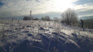 """""""…geresnio oro viduryje žiemos tiesiog nebūna. Pakenčiamas šaltis, miltų purumo po kojomis girgždantis sniegas. Ir viską apsikabinusi saulė – nuo pat tylaus balto ryto. """""""