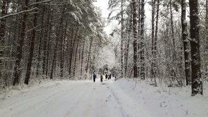 """""""Ten, kur vietovardžiams lengva rasti lietuviškus atitikmenis. Kur užmigusi Juodoji Ančia. …Ten, kur prasideda Šešupė. Viso – apie 30 kilometrų."""""""