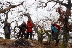 kalnų-kopų-miškų grupė, kuriems reikia rimtesnio veiksmo