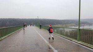 Pabyrame ant pėsčiųjų tilto į Panemunės šilą