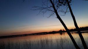 Tapytojo teptukui pasiruošęs Širvėnos ežeras
