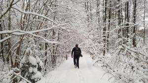 Pirmas naujų metų savaitgalis mus pasitiko tikros žiemos pasakos motyvais