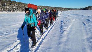 Pirmyn, medžioti Aurora borealis