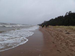 Paskutiniai skaidrumo kilometrai jūros pakrante…