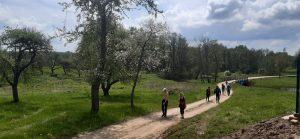 Katinautiškių kaimo keleliu