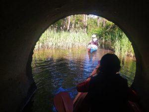 Žaluma tunelio gale